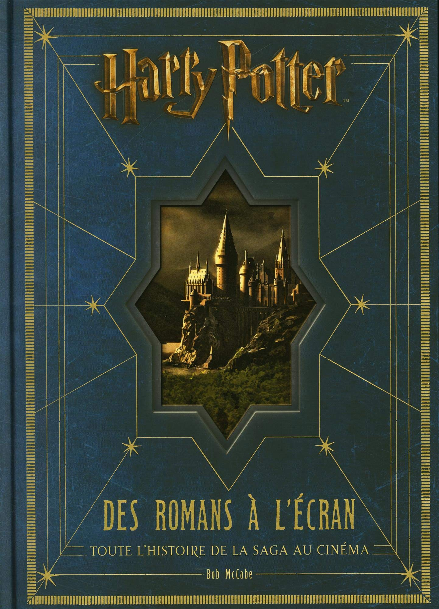 Harry Potter des romans à l'écran